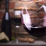 ¿Qué caracteriza la denominación de origen de La Mancha en los vinos?
