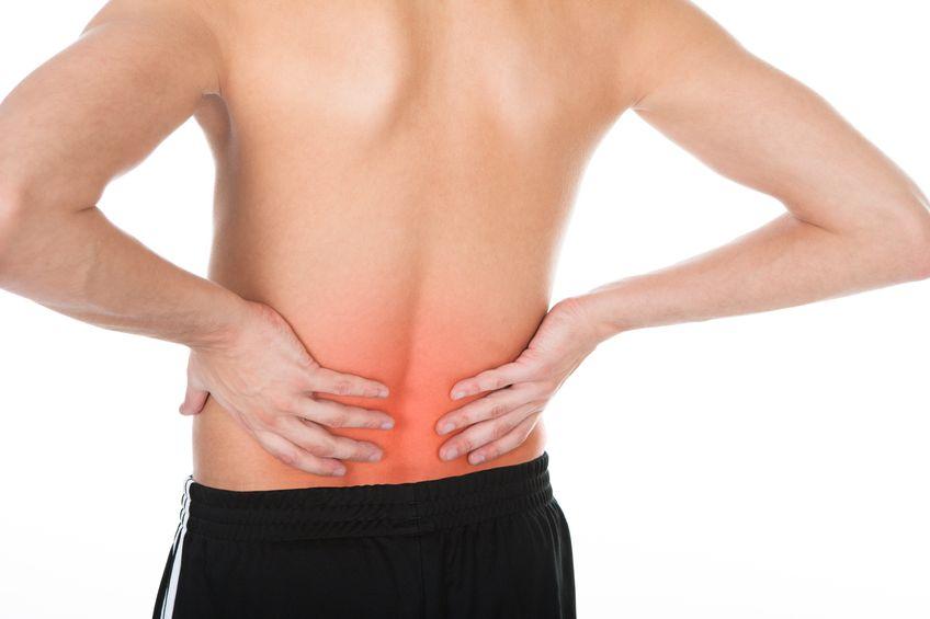 Una dieta basada en jamón ibérico puede ayudar a combatir la osteoporosis